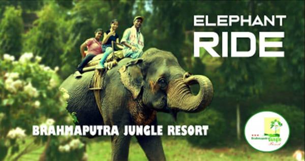 digital-ads-niconnect-marketing-bhramaputr-jungle-resort-shillong